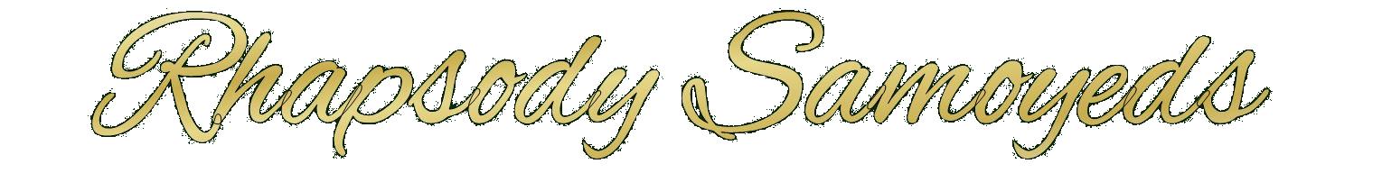 Rhapsody Samoyeds